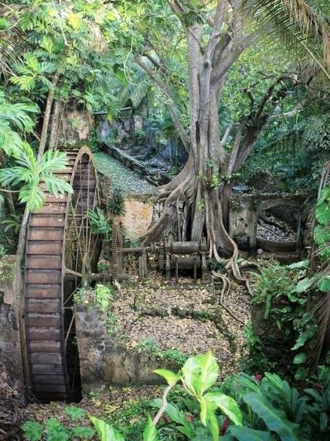 caribbean plantations balenbouche